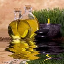 aceites vegetales para la piel-La Trastienda de Maria